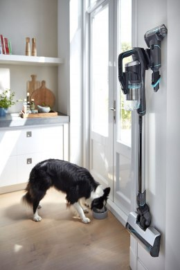 Bissell ODKURZACZ Icon Pet 25V Cordless operating, Handstick and Handheld, 25.2 V, Operating time (max) 50 min, Black